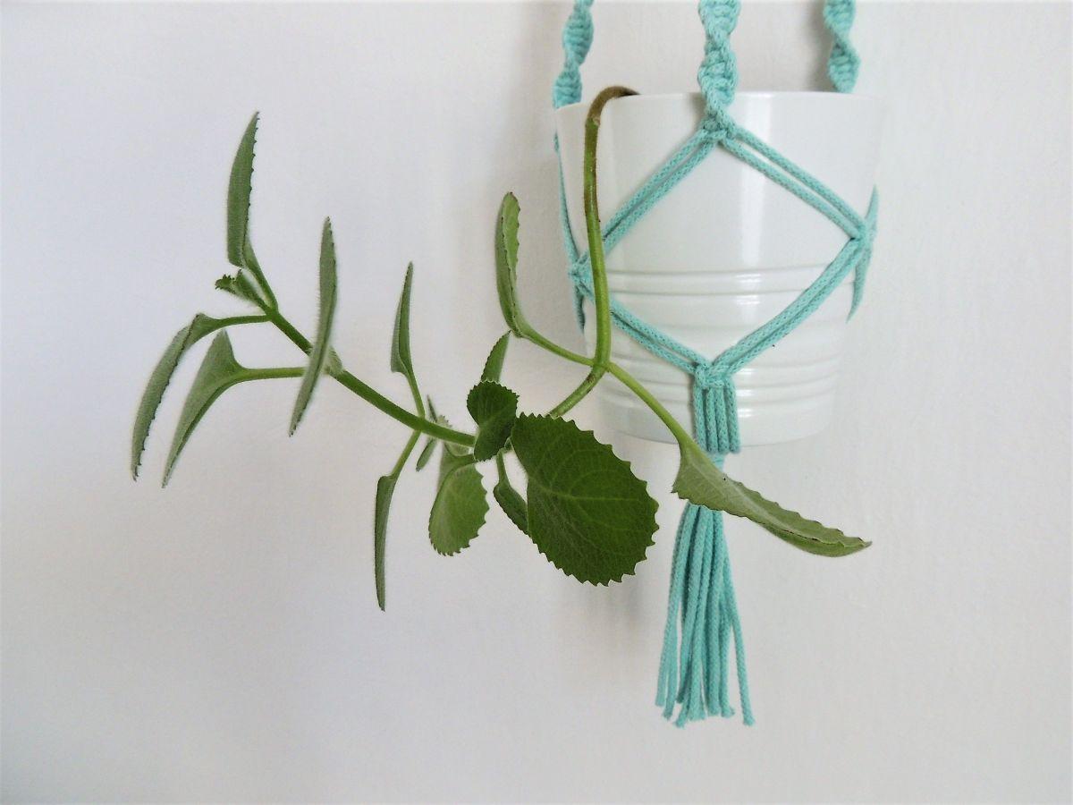 Drhaný závěs na květiny - Mint