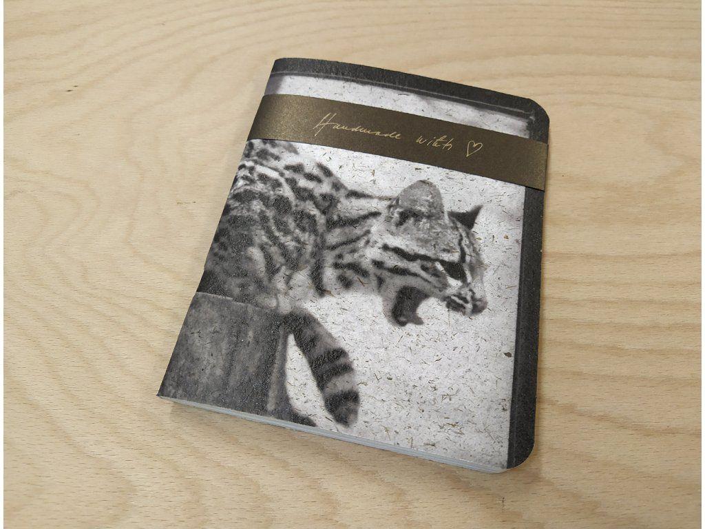 Sešit Lemniskáta - A5 kočka (Rob. Vano)