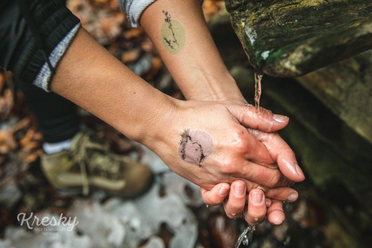 Tetovačky Kresky - Slieszky dom - flóra