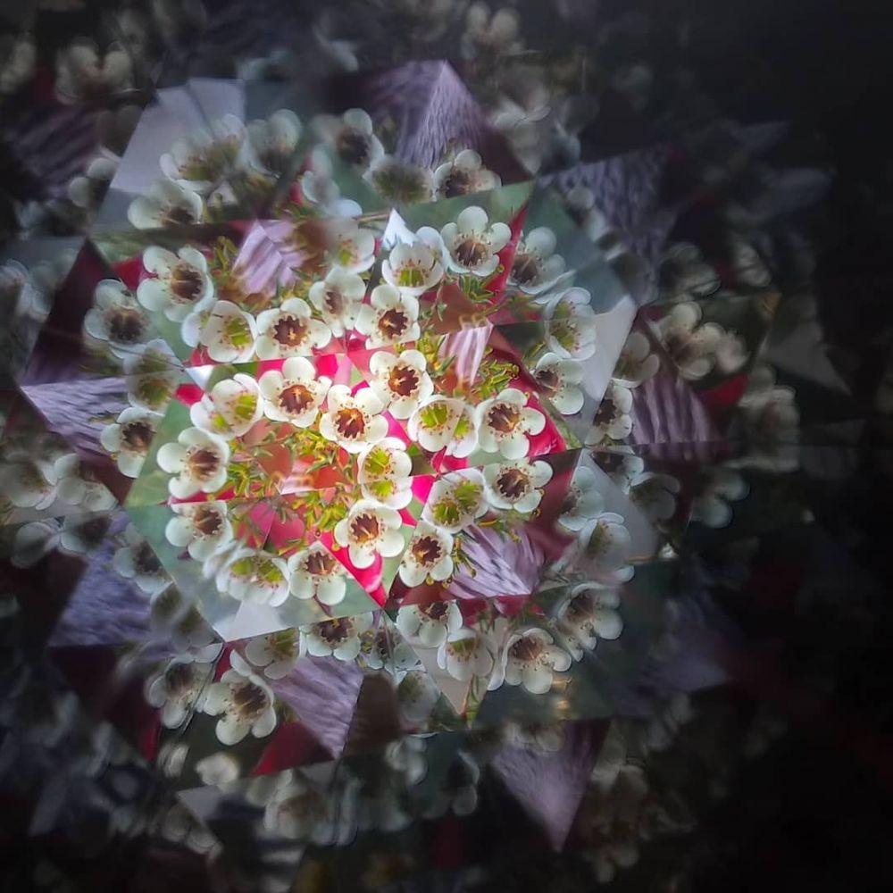 Optický krasohled Krasohledy - malý
