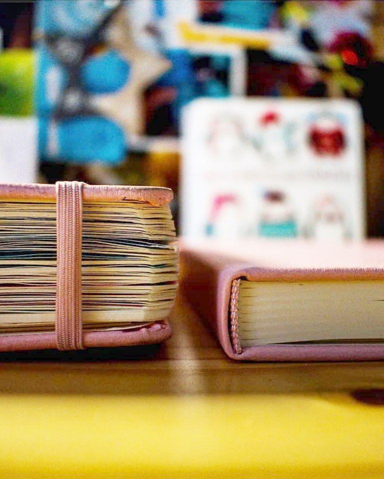 Doller Journal - růžový CZ na 12 měsíců